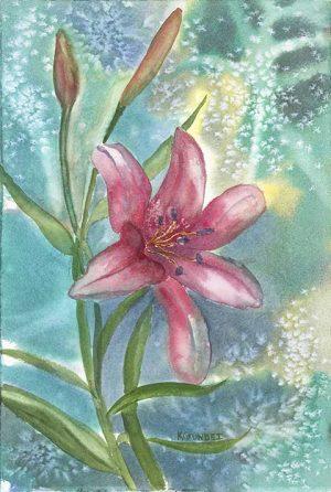 Moonlight Lily
