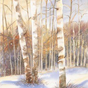 November Birch